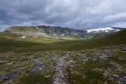 Ryggen(Kråkvasshalsen) du skal gå for å nå toppen av Kråkvasstinden.  - Foto: Oddveig Torve