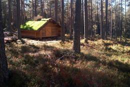 Dagsturhytte, Grue Finnskog, Finnskogen Turistforening -  Foto: Stein  Briskerud