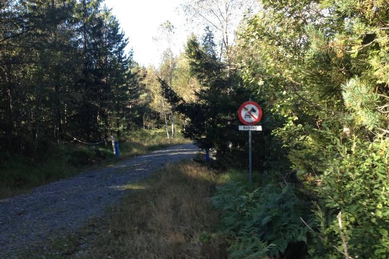 Denne skauveien tar du sør for Rosseland. Du springer ca 2 km på asfalt før den dukker opp. På toppen av en lang bakke