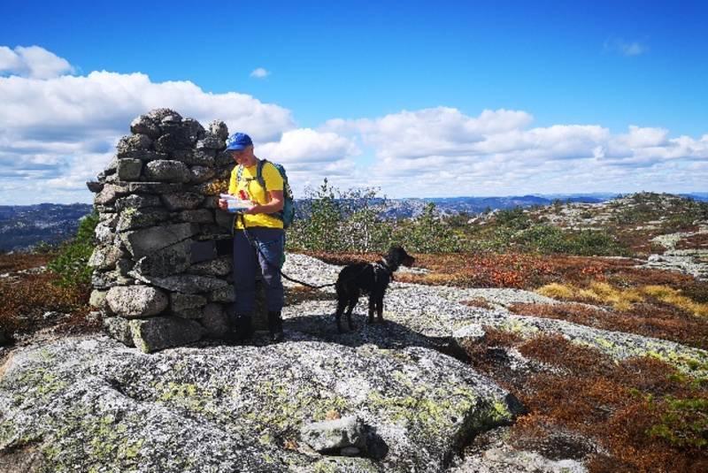 Toppen av Åbogsfjell