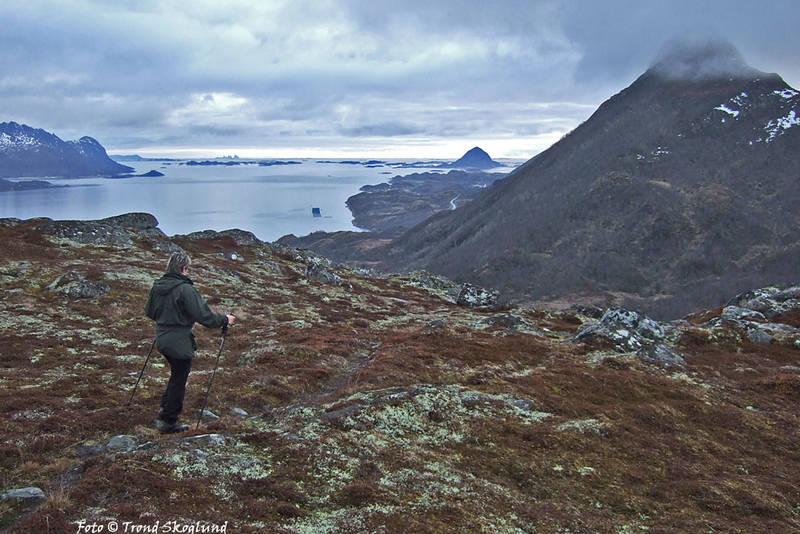 Utsikt fra høyde 240 sør for Migandlivatnet mot Meløyfjorden og Bolga. Træna skimtes langt ute i horisonten til venstre i bildet.