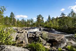 Elva ut av Ankersvatnet - Foto: Kjell Fredriksen