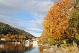autumn  -  Foto: Paul Groesch