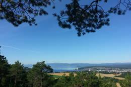Utsikt fra Raudåsen -  Foto: Visit Innherred, Kathrine Kragøe Skjelvan
