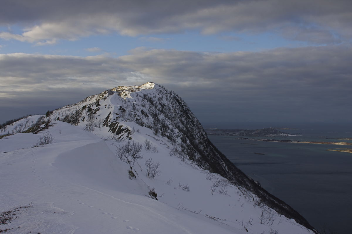 Ryggen over mot høyeste punkt 360 moh