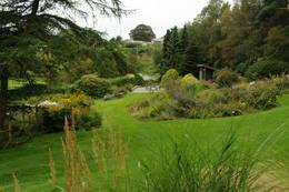 Stavanger Botaniske hage -  Foto: Torgunn Skrudland