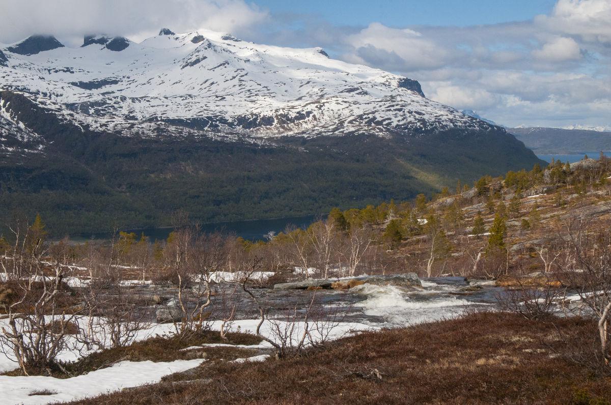 Utsikt til Sagfjorden