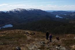 Midtsæterfjellet -  Foto: Ragnhild Stende Bjaadal