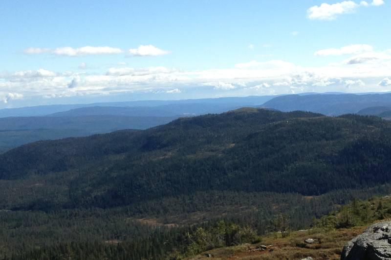 Utsikt mot Nedalsfjellet i sørøst.