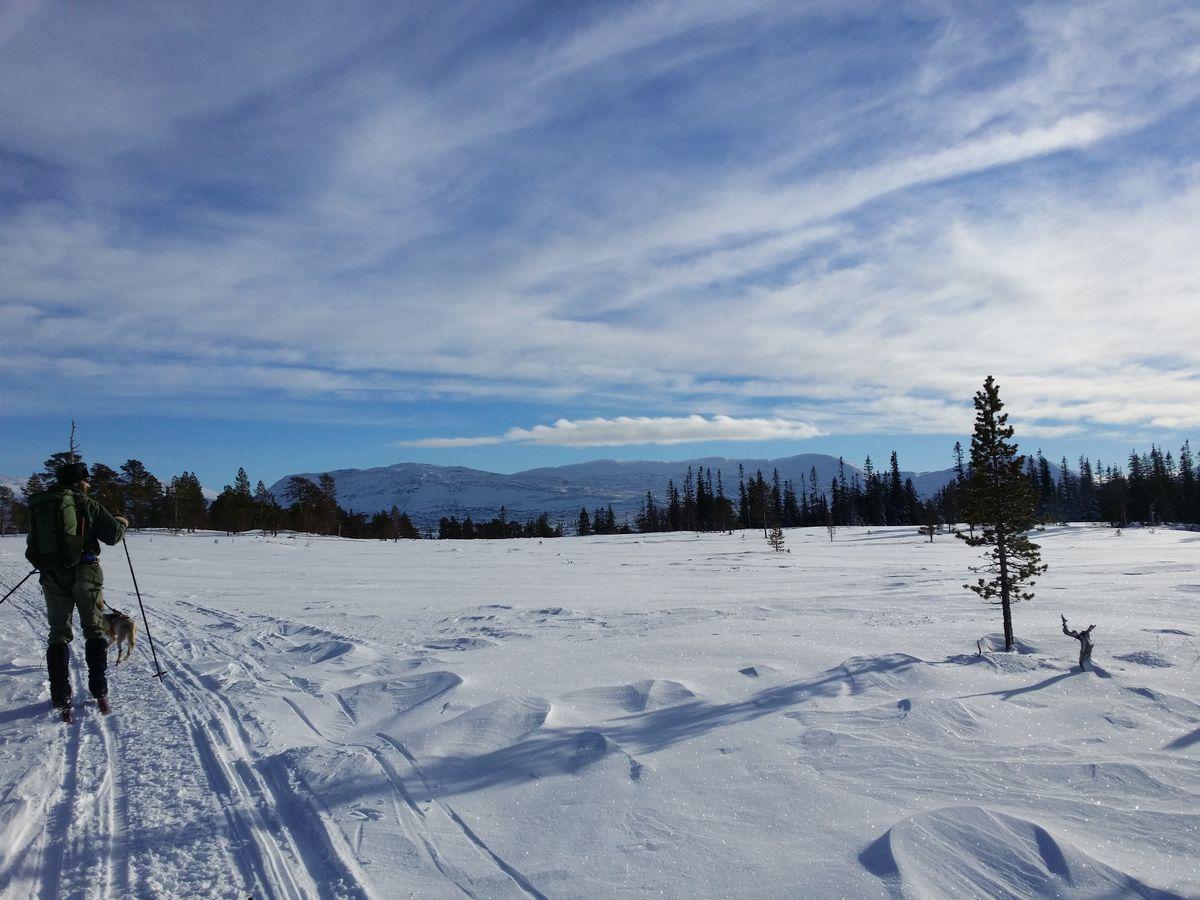 skitur til alpene