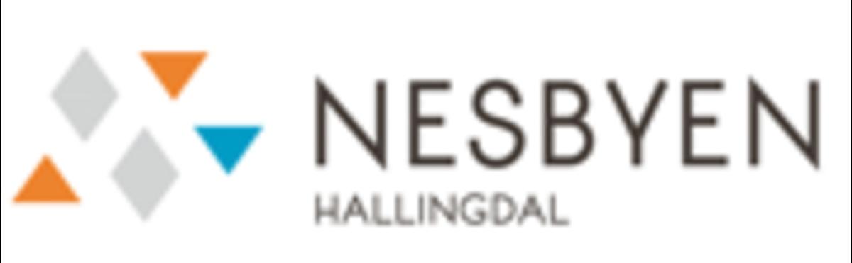Profilbilde for Nesbyen turistkontor