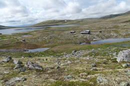 Korsberghytta i Alvdal Vestfjell - Foto: Julie Maske