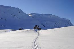 Februar ved Vending og godt skiføre.  - Foto: Karl H. Olsen