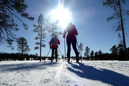 Turen til Ølshøgda byr på fine skispor i et ypperlig skiterreng. -  Foto: Jonny Remmereit
