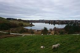 Utsikt til Stokkelandsvannet - Foto: Anette Hauge