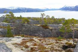 Utsikt inn Sagfjorden - Foto: Kjell Fredriksen