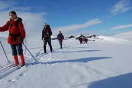 Fra trekkhundtur Hardangervidda 2009 -  Foto: Johan fegri