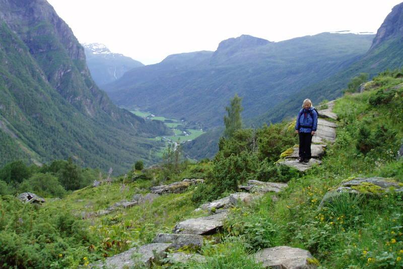 Fra strekningen Fortundalen - Stølsdalen