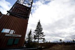 Masta på toppen - Foto: Ingolf Zeiner Petersen