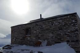 Nordlysobservatoriet fra baksiden - Foto: Vigdis Nygaard