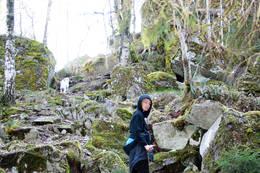 Stien opp til Skaanevetan - Foto: Ukjent