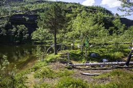 Klippetanga ved bålplassen - Foto: Kjell Fredriksen