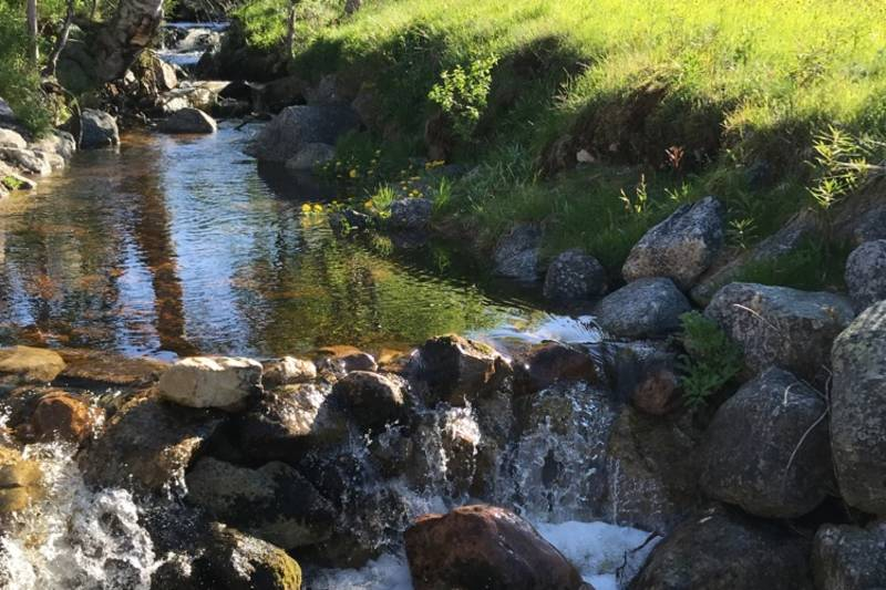 Bekken vår er demmet opp og flittig brukt som badekulp for store og små i sommer :)