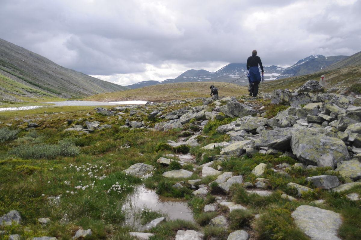 Klassisk rundtur i Rondane (Trekanten)
