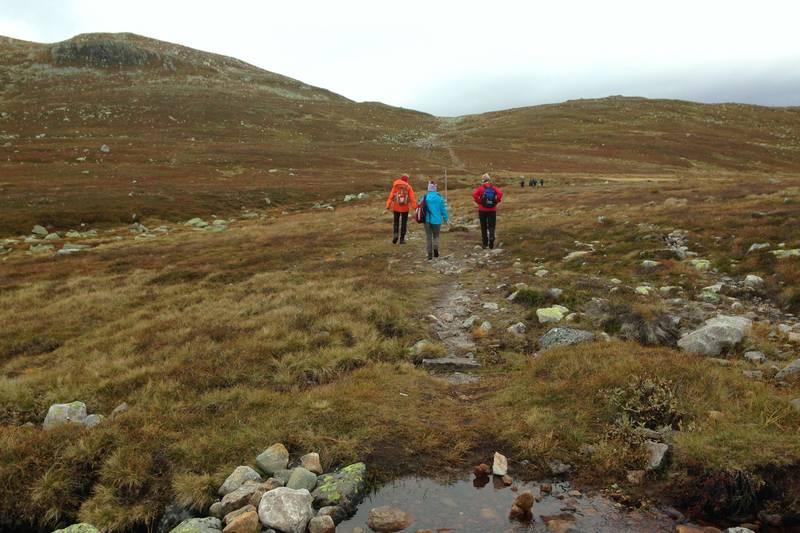 Ved krysset ved Raumyrane deler stien seg. Den til høyre går til Høgevarde, til venstre mot Gråfjell, og hit går vi.