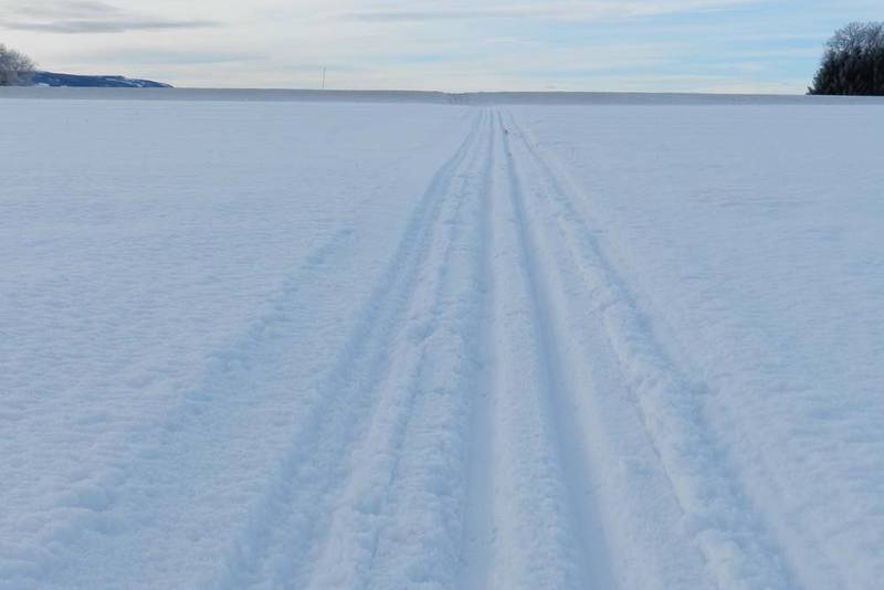 I Stange går skiløypene rett inn i horisonten. Og horisonten kan være en vegkant eller en kul på jordet.