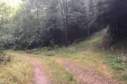 Opp til høyre går veien til Ravnevann - Foto: