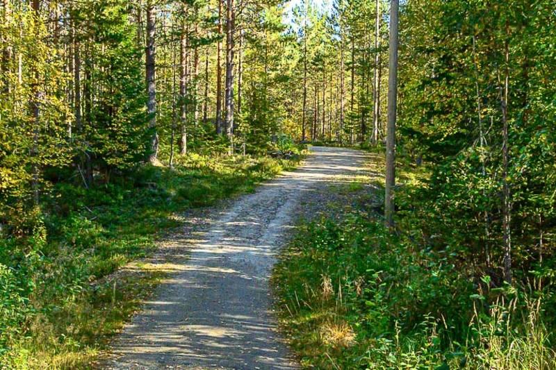 Fin turvei til Dragsjøhytta fra Fjellfoten