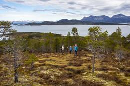Flott turterreng - Foto: Kjell Fredriksen