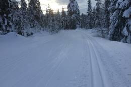 Bymiljøetaten prepper løyper fra Movatn til krysset ved Tømte Gård - Foto: Janet Bydal