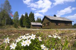 Lauvesetra -  Foto: Larvik og Omegns Turistforening