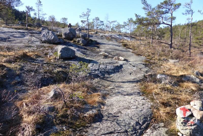 Etter å ha gått ei stund i småskog kommer man ut i åpnere terreng.