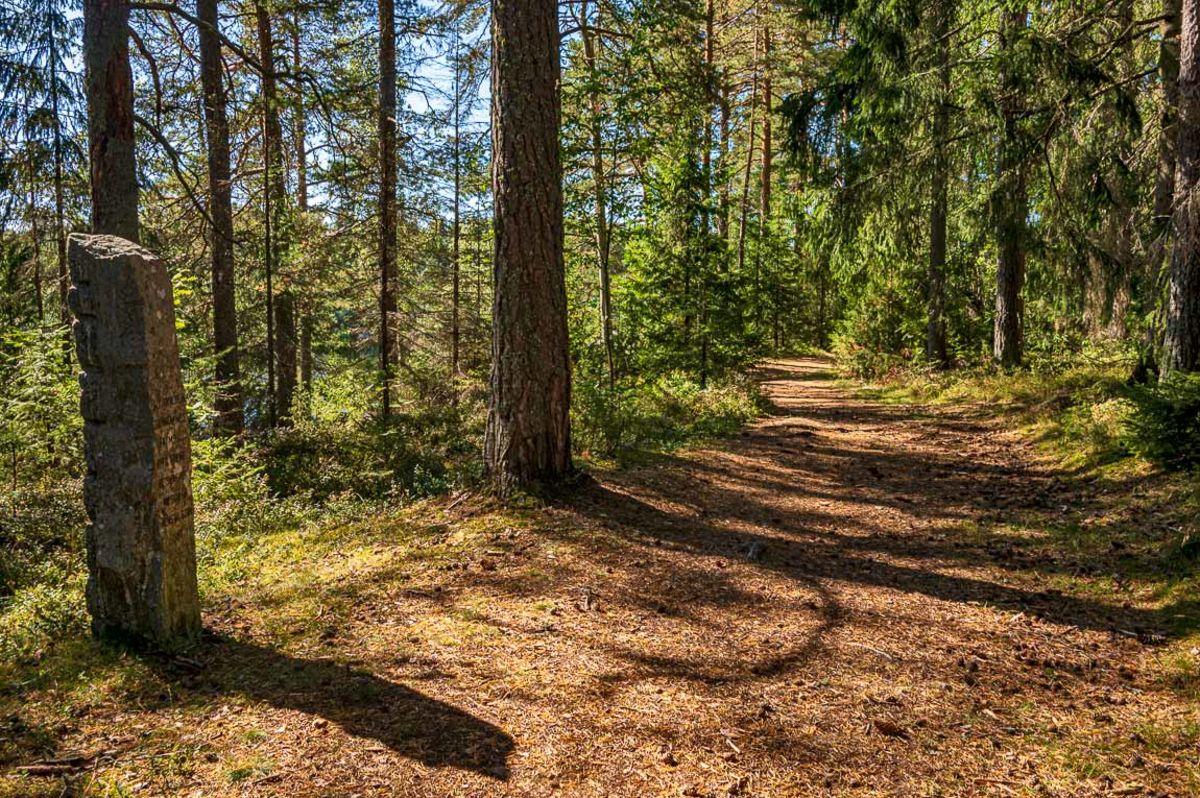 Oldtidsveien langs Glomma