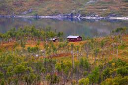 Slik kan fargespillet rundt hytta være om høsten. I bakgrunnen Fellvatnet, som er regulert. - Foto: terje olufsen