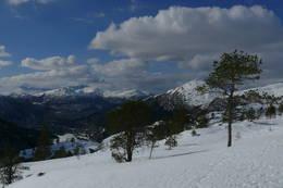 Utsikt vestover frå Kvamsbakkestøylen, mars 2013 - Foto: Jan Roar Sekkelsten