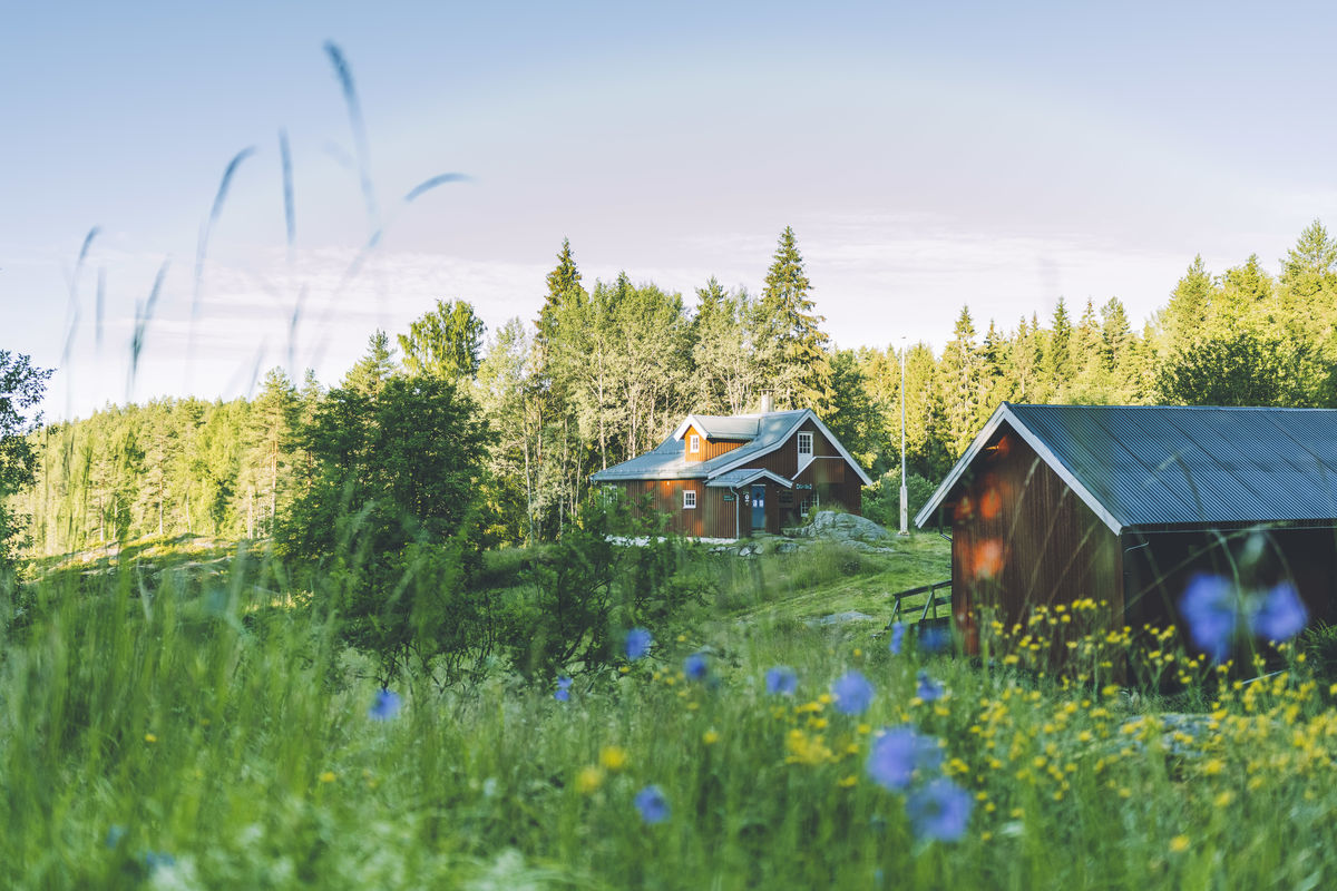 Sommerdag på Bøvelstad