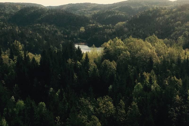 Utsikt fra bygdeborg