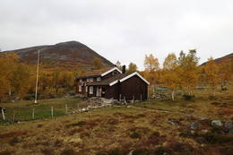 Vakkerstøylen i september - Foto: Harald Tryggestad