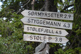 Avstandar - Foto: Kristian Mjølsneset