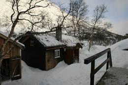 Vangshaugen - Foto: Håvard Johansen