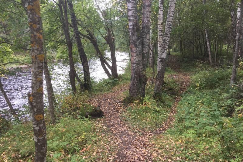 Stien går langs Svartelva