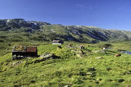 Åsestølene ved turisthytten. Foto Helge Sunde. - Foto: Ukjent
