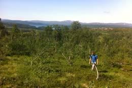 På tur opp til Lissfjellet -  Foto: Tine Mikkelsen