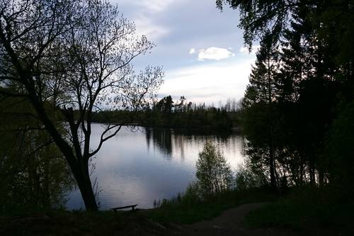 bekken gård trondheim kart Rett ut Liaåsen fra Bekken gård   Tur   UT.no bekken gård trondheim kart