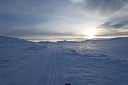 Gulrunden - Foto: Solveig Hjallen