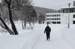 Lågalandet -  Foto: Mette Martinsen